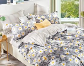 Комплект постельного белья Семейный, печатный сатин 1005-7