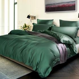 Комплект постельного белья Евро, тенсел однотонный 1045-4