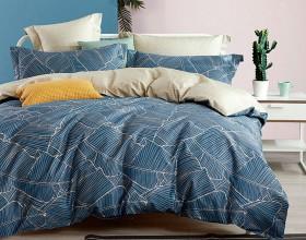 Комплект постельного белья Евро, печатный сатин 1080-6
