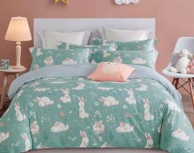Комплект постельного белья 1,5-спальный, печатный сатин 1293-4S